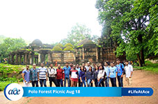 Polo Forest Picnic